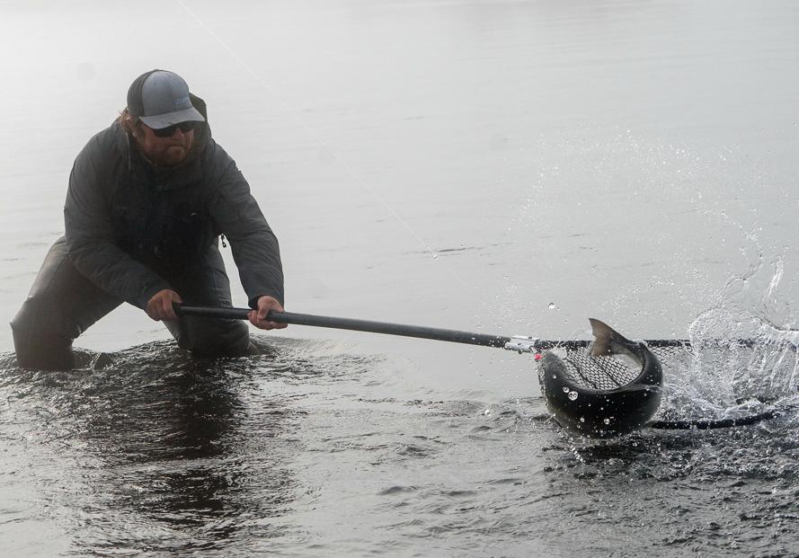 Fly fishing lodges Alaska