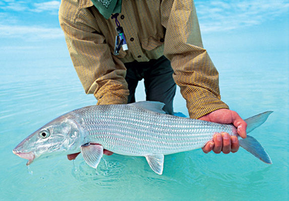 Best Bahamas bonefishing lodges