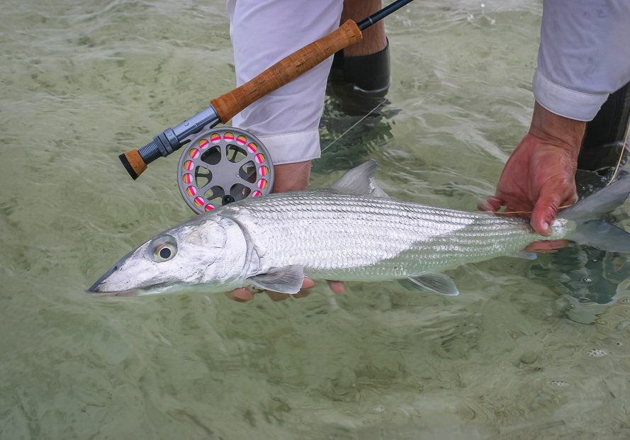 Great Inagua fly fishing