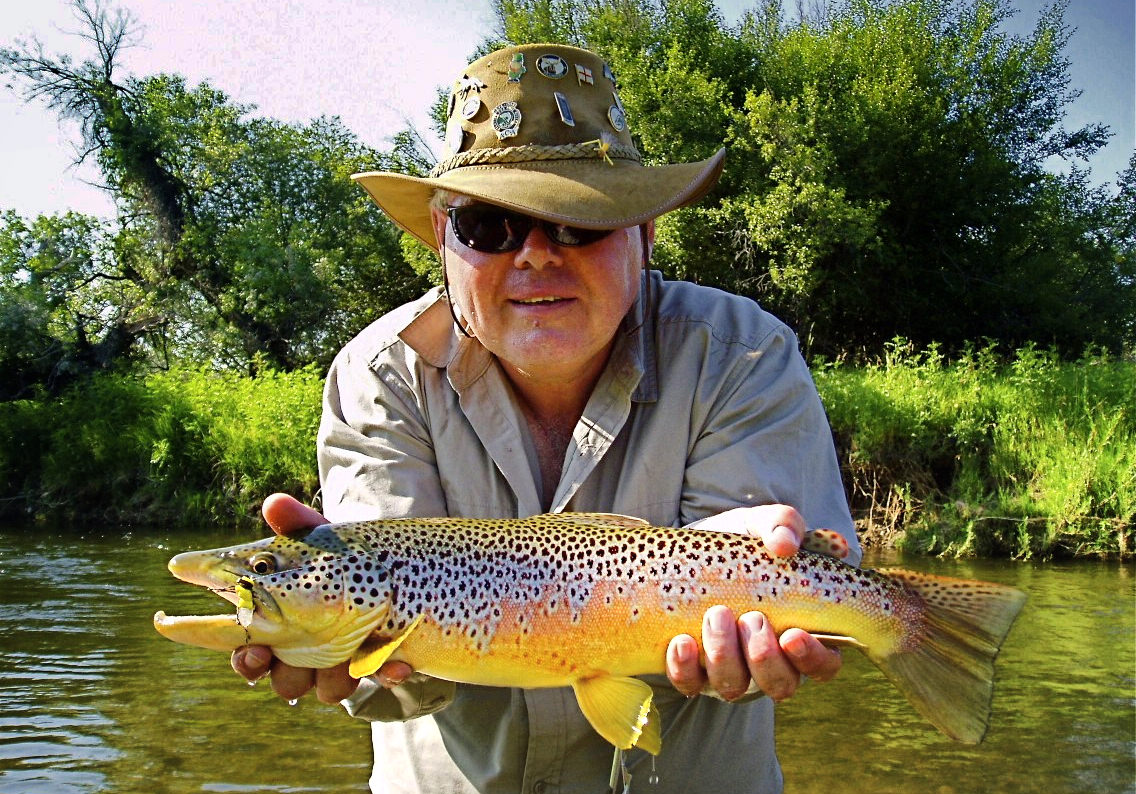 Wild Brown Trout Fly Fishing Guided Trip